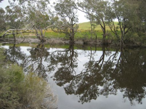 Blackwood River at the Winnijup Rd Bridge