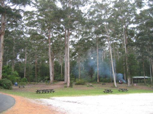 Big Brook Dam picnic area, near Pemberton, Western Australia
