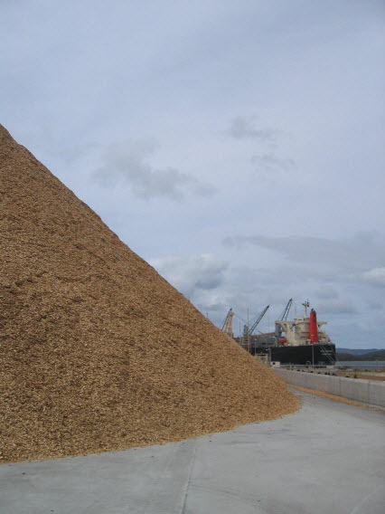 Prt of the 100,000 tonne wood chip stockpile