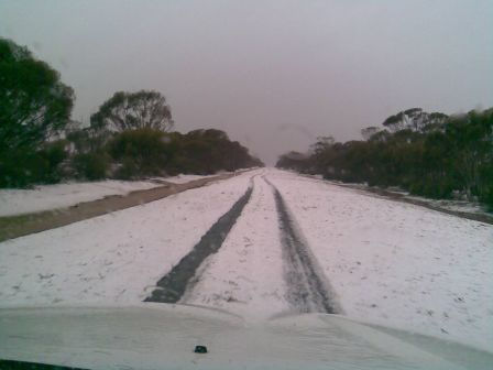 Highway, Coolgardie to Esperance, 26 Nov 2008