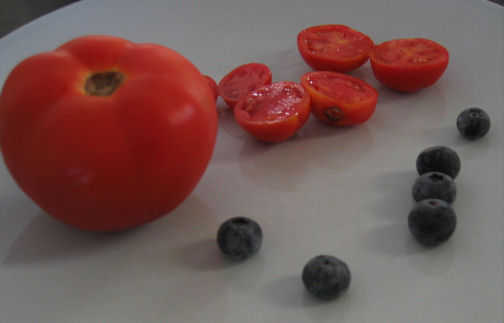 Tiny tomatoes with normal tomato and blueberries for size comparison