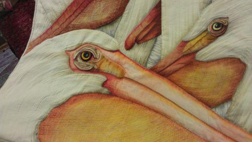 qa_2013_day2_velda_pelican02
