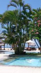 Pen_Bch_Resort__0010
