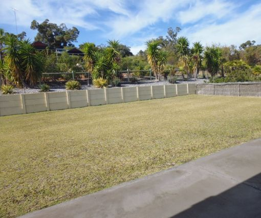 lawn_before