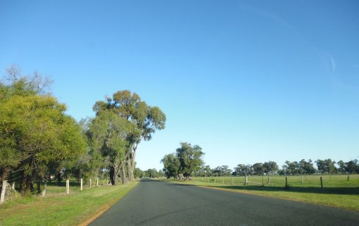 Cathedral Ave, near top end of Leschenault Estuary, Western Australia, around 4pm