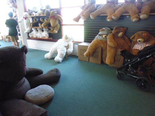 Bears of all sizes - the large ones look like they've had too much Christmas food and drink!