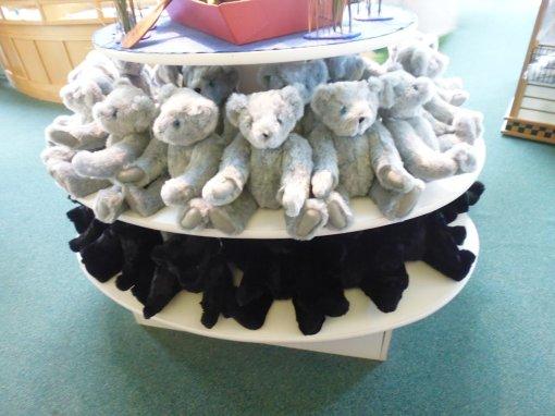 There are gray bears, black bears, blonde bears, brown bears...