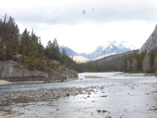 Bow River, Banff -- below the falls