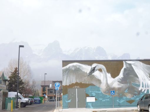 Some of the street art in Canmore, with one of the sets of mountains surrounding the town in the background